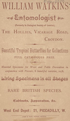 Advert for William Watkins, entomologist